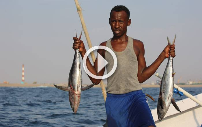 Inside Somali Fishing Video