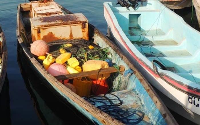 Berbera Fishing Company