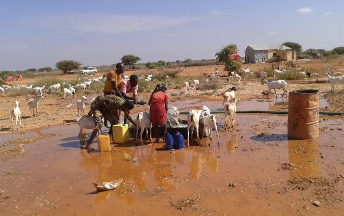 Kalkaal Mixed Farm Somalia