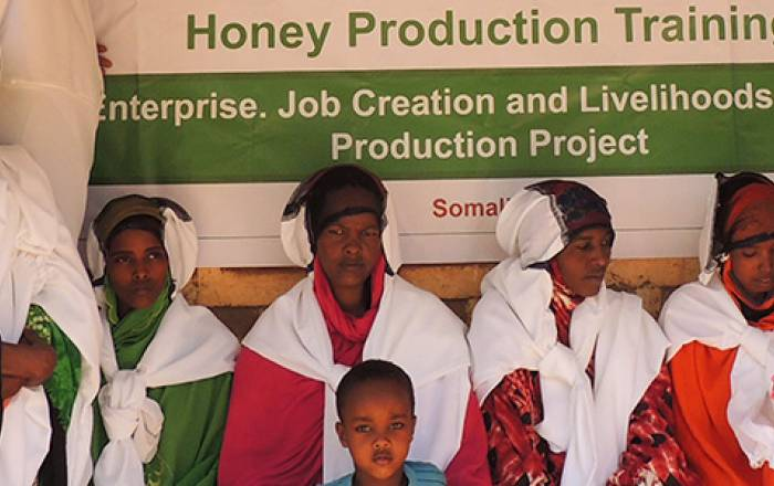 Pastoral and Environmental Network in the Horn of Africa