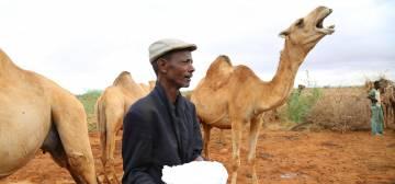 Small Medium Enterprise Fund for Somalia