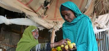 Women's Economic Empowerment Program