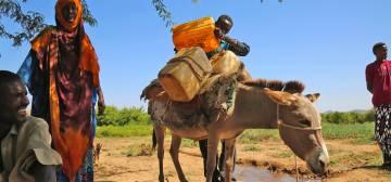 Norfund Aid for Somalia
