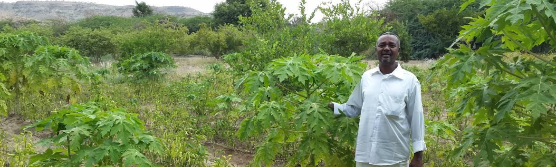 Las Durre Farm Somalia