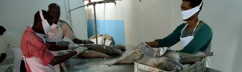Somali Marine Products Cooperative
