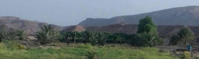 Jiniyeley Farm Somalia