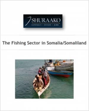 Somaliland Fishing Sector