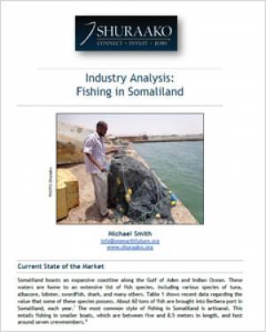 fishing in somaliland