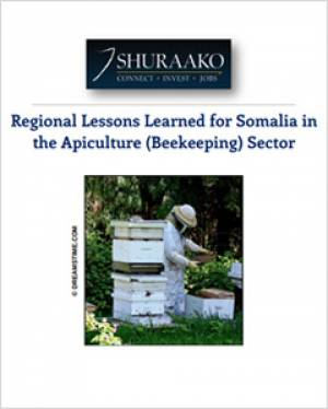 Beekeeping in Somalia