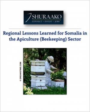 Beekeeping in Somalia