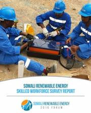 Skilled Work Survey Somalia