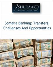 somali banking system